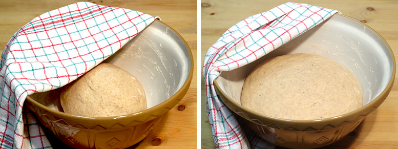Letting The Manchet Bread Dough Rise Before Baking